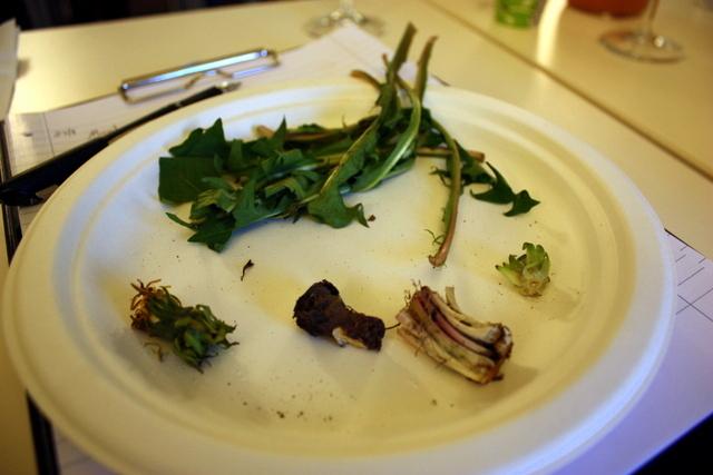 וגם זה שיעור - כל החלקים האכילים של צמח שן הארי בגירסתו האלפינית