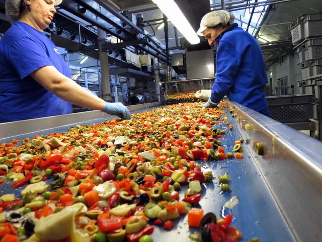 מכינים תערובת לסלט אורז - הירקות מגיעים שטופים וחתוכים על המסוע ואת הצלפים מוסיפים ידנית, שלא יימעכו בתהליך