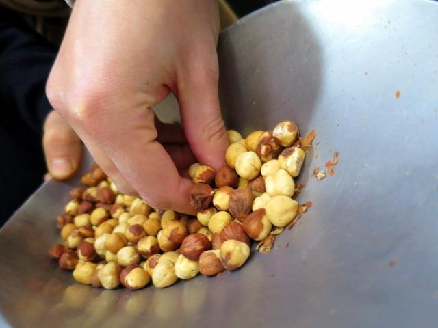מתוך 150 דונם, 50 מוקדשים לגידולים של אגוזי לוז - מהסמלים המובהקים של פיימונטה